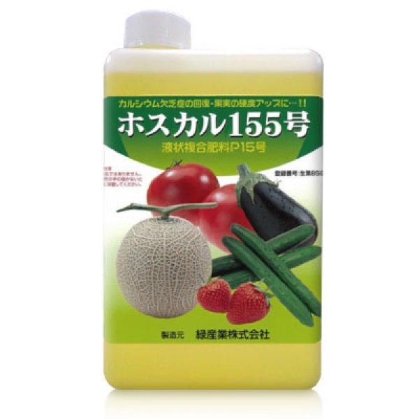 画像1: ホスカル155号 [ 亜リン酸カルシウム肥料 ] (1)