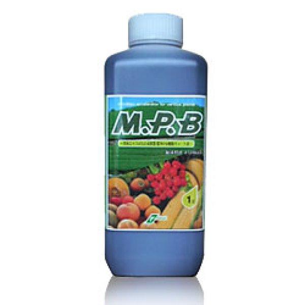 画像1: M.P.B (海藻エキス&光合成細菌&有機酸キレート鉄) [ 植物活性剤 ] (1)