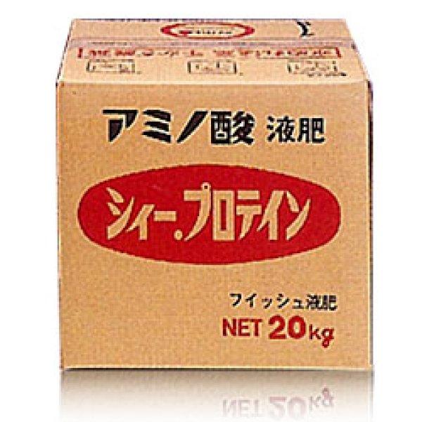 画像1: シィー.プロテイン 600 [ アミノ酸液肥 ] (1)