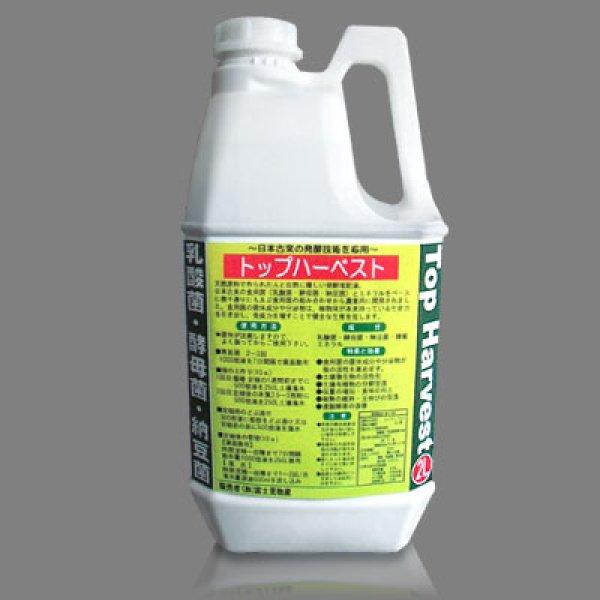 画像1: トップハーベスト [ 乳酸菌・酵母菌・納豆菌発酵液肥 ] (1)