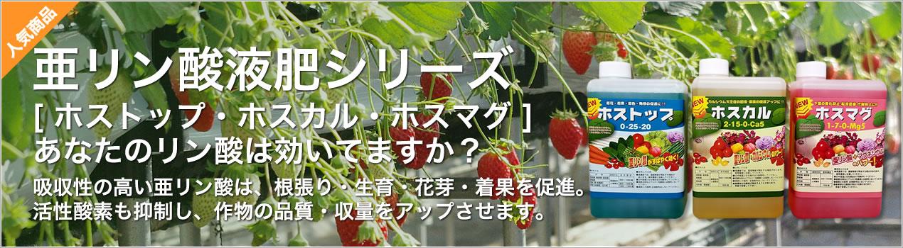 ホストップ 亜リン酸カリ肥料